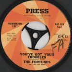 You've Got Your Troubles / I've Gotta Go